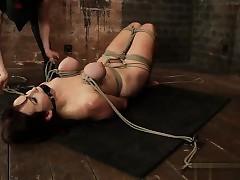 BDSM heta videor - hd porr tube
